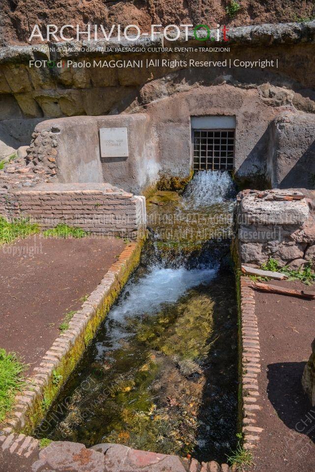 178ND61019P_MAG_3775_Paolo-Maggiani_07042019_Acquedotto-Parco-degli-acquedotti-Roma