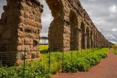 178ND61019P_MAG_3758_Paolo-Maggiani_07042019_Acquedotto-Parco-degli-acquedotti-Roma