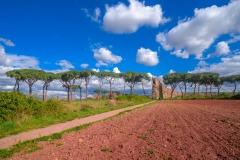 178ND61019P_MAG_3830_Paolo-Maggiani_07042019_Acquedotto-Parco-degli-acquedotti-Roma