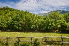 182ND61019PMAG_5795_Paolo-Maggiani_02082019_Apella-Apennino-bosco-collina-Licciana-Nardi-Montagna-Verde