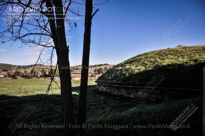 Una_Giornata_Etrusca_a_Populonia_154ND70019P_MAG9547-Ph_Paolo_Maggiani