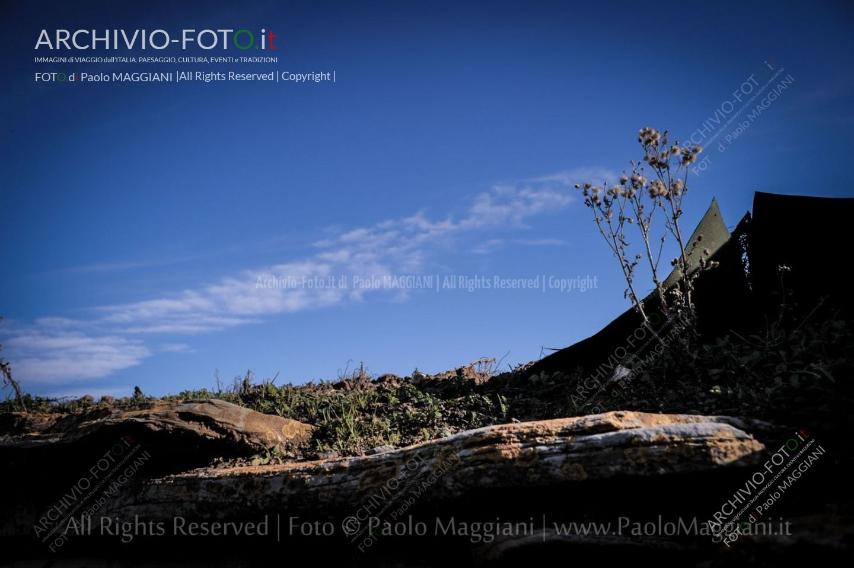 Una_Giornata_Etrusca_a_Populonia_154ND70019P_MAG9608-Ph_Paolo_Maggiani