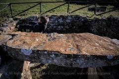 Una_Giornata_Etrusca_a_Populonia_154ND70019P_MAG9658-Ph_Paolo_Maggiani