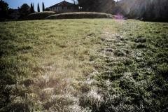 Una_Giornata_Etrusca_a_Populonia_154ND70019P_MAG9686-Ph_Paolo_Maggiani