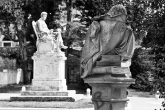 Carrara_Monumento-a-Pellegrino-Rossi_scorci-cittadini_2010_maggianipaolo_27_24609979094_o