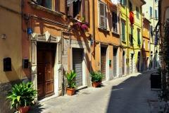 Carrara_Via-Santa-Maria_scorci-cittadini_2010_maggianipaolo_50_24944954660_o