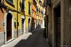 Carrara_Via-Santa-Maria_scorci-cittadini_2010_maggianipaolo_55_24944938910_o