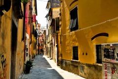 Carrara_Vicolo-dell-Arancio_scorci-cittadini_2010_maggianipaolo_41_24613787103_o