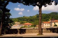 Carrara_Vista-sulla-Zona-Collinare-di-Sorgnano_scorci-cittadini_2010_maggianipaolo_07_24945086760_o