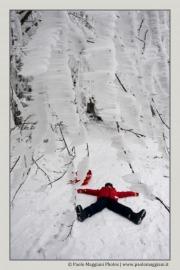 neve-alberi-foglie-Paolo-Maggiani-Photos-D61018P_MAG7914
