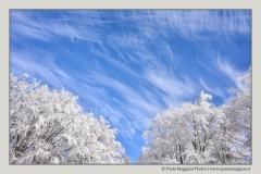 effetti-di-nuvole-a-Cerreto-Laghi-Apennino-Tosco-Emiliano-Paolo-Maggiani-Photos-D61018P_MAG7982