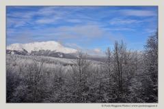 montagne-e-boschi-a-Cerreto-Laghi-Apennino-Tosco-Emiliano-Paolo-Maggiani-Photos-D61018P_MAG8004