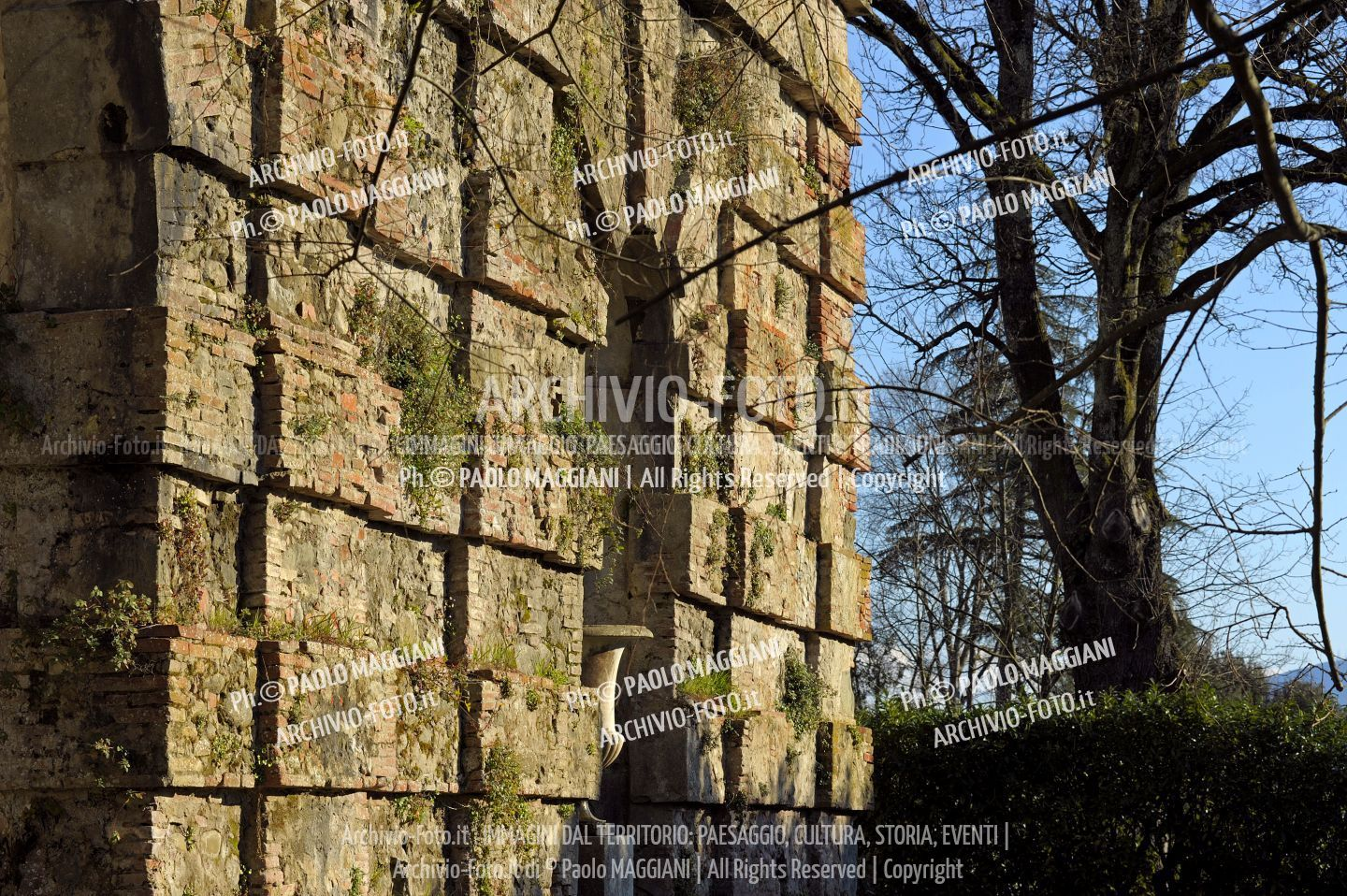 156ND70020P_MAG2957-FS-LUCCA_VILLA_REALE