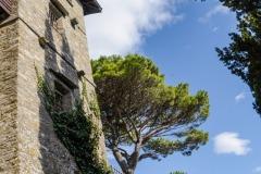 183ND61019P_MAG7714_Paolo-Maggiani_07102019_castello-Lunigiana-Podenzana