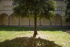 Pontremoli_Ex-Convento-Agostiniano_147ND61018P_MAG6770-FS