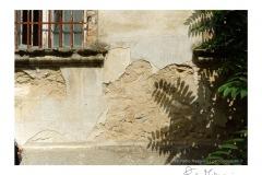 Manicomio_Volterra_2014_-59