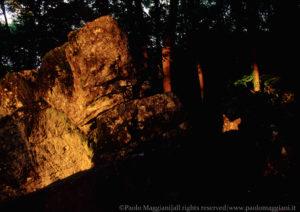 Caprione-Liguria-Laspezia-21-Giugno-Farfalla-di-Luce-dorata-Solstizio-d-estate-light-golden-butterfly-summer-solstice-june